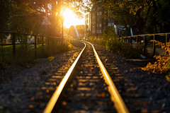 Uppsala, September 26, 2019 (Ulf Bodin) Tags: järnvägsspår uppsala rail sunset transportanläggning sweden outdoor lännakatten höst järnväg solnedgång sverige bergsbrunnaparken canoneosr canonrf85mmf12lusm railroad uppsalalän smalspårig