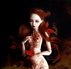 Fragile (pure_embers) Tags: pure laura embers porcelain bjd doll dolls england uk girl zuluminous sparrow pureembers holy skeleton painted photography photo ball joint portrait fine art beauty dark red leaves