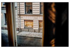 (schlomo jawotnik) Tags: 2019 oktober stockholm infremdenbetten hotelzimmer ausblick view vorhang strase asphalt regenrohr schaufenster thaimassage schwäne analog film kodak kodakproimage100 usw