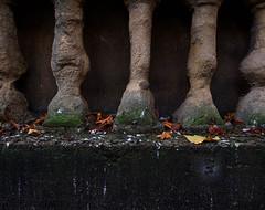 Harrogate: weathered stonework, autumn leaves and bird muck (Allan Rostron) Tags: yorkshire harrogate
