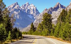 Park Road in Grand Teton National Park, Wyoming (lhboudreau) Tags: mountainsofwyoming grandteton mountain mountains wyoming nationalpark tetonparkroad road innerparkroad tree trees grandtetons tetonmountains park outdoor tetons