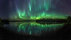 Strong auroras above water (M.T.L Photography) Tags: auroraborealis water stars trees forest sky autumn aurorapanorama bigdipper night dark mikkoleinonencom mtlphotography