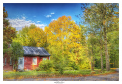 Cabin In The Fall (Pearce Levrais Photography) Tags: cabin autumn autumnleaves fall foilage house door window tree forest plant road outside outdoor nature sony a7r3 hdr