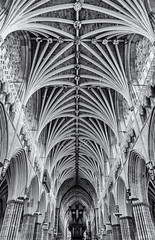 Heavenly vaults (David Feuerhelm) Tags: mono monochrome bw blackandwhite noiretblanc schwarzundweiss blancoynegro building arches interior ceiling architecture cathedral exeter old historic wideangle perspective nikkor 2470mmf28 nikon d750 symmetry