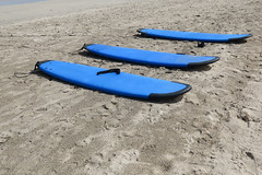 Three blue surfboards lying on the beach (stewart.watsonnz) Tags: sand water beach surfing outdoors sea sport summer ocean kayak leisure outdoor recreation surfingequipment nature blue laying seawaves seashore sitting noperson board surfboard fun sandy vacation lying coast surf shoreline travel standing bay lined relaxation fairweather group tubing athlete