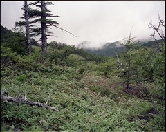 (✞bens▲n) Tags: mamiya 7ii kodak ektacolore gold 160 ektacolorgold160 80mm f4 film analogue 6x7 japan nagano mountains nature landscape