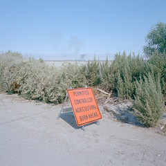permitted burn. thermal, ca. 2019. (eyetwist) Tags: eyetwistkevinballuff eyetwist permitted controlled agricultural burn sign orange thermal farm smoke fire desert california mamiya 6mf 50mm kodak portra 400 mamiya6mf mamiya50mmf4l kodakportra400 ishootfilm ishootkodak analog analogue film mamiya6 square 6x6 mediumformat 120 primes filmexif iconla epsonv750pro lenstagger dirt sonorandesert dry bleak americantypologies landscape roadsideamerica saltonsea sand american west ranch palmsprings coachella type typography warning caution