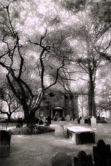 St. Paul's Churchyard (sjnnyny) Tags: stevenj sjnnyny nylandmark graves lowermanhattan stpauls d750 afsnikkor2470f28ged headstones landscape trees