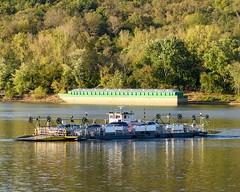 Anderson Ferry on the Ohio River (SL&S) Tags: ohio nikon kentucky cincinnati ohioriver z6 andersonferry nikon80200f28afd ftzadapter