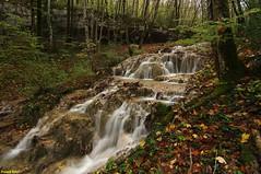 Ruisseau Tuffier de la Source de Comboyer  et son abri sous roche - Norvaux - Amancey (francky25) Tags: ruisseau tuffier de la source comboyer et son abri sous roche norvaux amancey automne franchecomté doubs