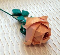 Kawasaki rose (Andrey Ermakov) Tags: origami rose art oriart crease paper papercraft