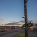 Fork Totem Pole