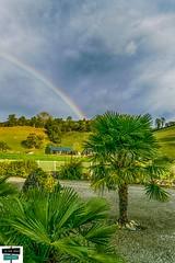 Arc-en-ciel, Rainbow - Vallée de Barétous (https://pays-basque-et-bearn.pagexl.com/) Tags: arcenciel rainbow arette valléedubarétous aquitainelimousinpoitoucharentes colinebuch arbres palmiers sudouest vaches prairies habitations