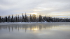 Alaska Winter Sunrise (mutrock) Tags: sunrise winter trees ice lake alaska ak usa unitedstates 2019 clear