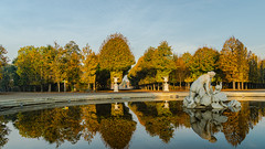 Avenues with roundabout (a7m2) Tags: austria vienna schönbrunn palace schlosspark unescoworldheritagelist spazieren travel besucher tourismus baumschnitt herbst autumn avenues reflection