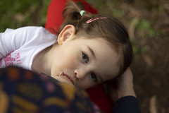 (louisa_catlover) Tags: karwarra karwarraaustraliannativebotanicgarden garden nature outdoor spring kalorama dandenongs melbourne victoria australia portrait family child toddler daughter tabitha tabby