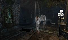 Athenaeum Halloween Contest   All Hallows Eve -The Moment After (Samahalo) Tags: athenaeum halloween contest