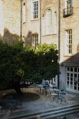 MOLI museum garden (UCD Staff Photography Club) Tags: dublin ireland moli museum muesumofliterature ucd newmanhouse georgian joyce literature cafe terrace strawberrytree patio garden