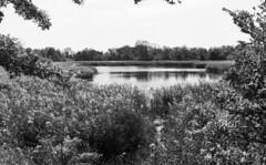 Ridgewood Reservoir - Highland Park, Queens (neilsonabeel) Tags: nikonfm2 nikon nikkor blackandwhite ridgewoodreservoir ohny openhousenewyork brooklyn newyorkcity reservoir