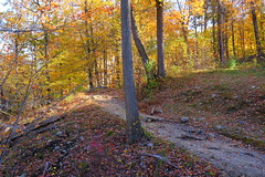 It's just around the corner (Lojones13) Tags: path autumn autumncolor leaves uphill nature natural outdoor fall landscape canon foliage trees