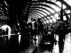 Early morning central station. (mitsushiro-nakagawa) Tags: 新宿 manhattan usa london uk paris アンチノック milan italy lumix g3 fujifilm mothinlilac mil gfx50r bw mono chiba japan exhibition flickr youpic gallery camera collage subway street novel publishing mitsushiro nakagawa artist ny interview photograph picture how take write display art future designfesta kawamura memorial dic museum fineart