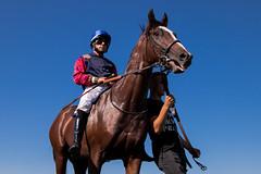 Junger Mann führt Pferd mit Jockey am Zügel