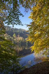 Ladybower reservoir in October (Keartona) Tags: peakdistrict derbyshire england beech tree autumn october water reservoir morning sunny weather nature beautiful edge shore landscape view scenery forest branches trees autumncolour colourful blue yellow