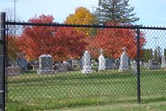Autumn Fence Friday (novice09) Tags: fence happyfencefriday cemetery monuments trees fall autumn sooc