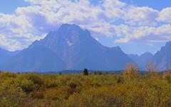 Autumn in the Grand Tetons (dramadiva1) Tags: canon autumn grandtetons mountains valley trees jacksonlake usa cloudy