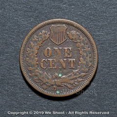 1869 Indian Head Penny (weeviltwin) Tags: indian head penny pennies 1869 wheat coin coins coinage mint minted us currency money monies copper old reddish brown collector collectible obverse weshootcom