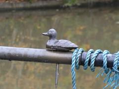 Duck Tiller Brass (Thomas Kelly 48) Tags: panasonic lumix fz82 cheshirering cheshire canal canalboat tiller tillerbrass anderton