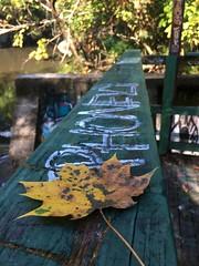 Baltimore MD ~ Round Falls (karma (Karen)) Tags: baltimore maryland jonesfalls roundfalls leaves fences shadows graffiti hff