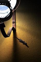 (Jean-Luc Léopoldi) Tags: nuit mur lumière éclairagepublic lézard ombres catalogne soir
