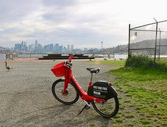 Gas Works Bike Share (Seattle Department of Transportation) Tags: seattle department transportation sdot bike bikeshare gasworkspark jump spaceneedle red goose skyline water nikiseligman
