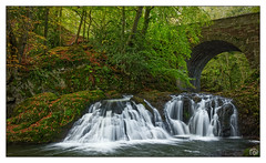 Arbirlot Falls (Marc Gordon'74) Tags: slow water abroath river scotland waterfall