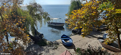 Small marina (borisnaumoski) Tags: ohrid macedonia lake trees autumn october boats nature beach