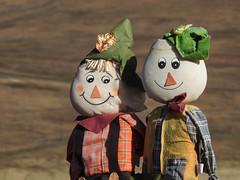 Happy scarecrows (annkelliott) Tags: scarecrow two perchedonafence face