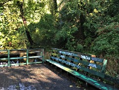 Baltimore MD ~ Round Falls (karma (Karen)) Tags: baltimore maryland jonesfalls roundfalls decks benches fences woods shadows graffiti iphone hff hbm cmwd