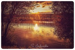 Sunset at the River (Stathis Iordanidis) Tags: rivermaas dramaticsunset riverside trees steyl netherlands travelling countryside nature silence serenity tranquility reflections mirroring