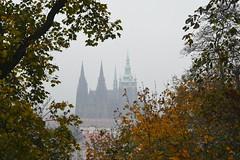 Prag im Herbstnebel (Blick vom Laurenziberg (Petřín) zum Veitsdom ( Katedrála svatého Víta))