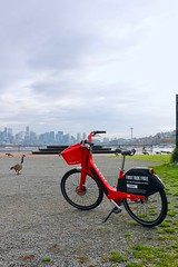 Gas Works Bike Share (Seattle Department of Transportation) Tags: seattle department transportation sdot bike bikeshare gasworkspark jump red geese water spaceneedle skyline nikiseligman