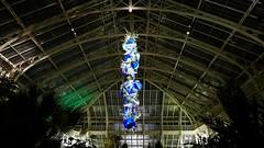 chuhuly (polkadotsoph) Tags: night glasshouse glass chandelier kew chihuly