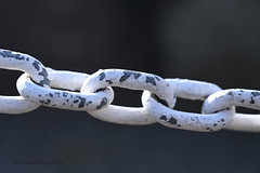 Chain in Brentford (louisemarston) Tags: uk brentford