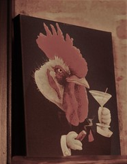 Rooster's vices... (jrmcmellen) Tags: chicken rooster martini cigar