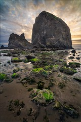 Haystack II (TomGrubbe) Tags: beach cannonbeach haystack haystackrock rocks moss coast sunset clouds oregon seascape
