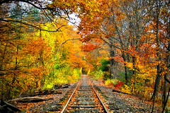 New Hampshire Autumn (MRD Images) Tags: fall autumn nh newengland newhampshire canon eos railway railroad 5d markiv tracks train forest wilton hillsborough october pro