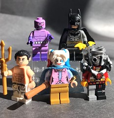 DC figs 67 (Spider-Geek) Tags: dc comics harley quinn birds prey deadshot namor batman lego custom