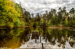 Donoperteich (.D..B.) Tags: nikon d7000 donoperteich sigma ys nrw germany water pond autumn trees clouds