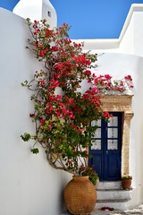 Kythera - the door #2 (athanecon) Tags: kythera kythira cythere island chora thedoor door flowers greece summer κυθηρα cerigo cirigo tsirigo