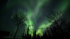 Green Fire (Katy on the Tundra) Tags: northernlights auroraborealis aurora nightsky